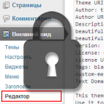 Запрещаем редактирование файлов через Консоль WordPress