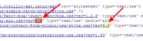 Как скрыть параметр с версией WordPress в JavaScript и CSS