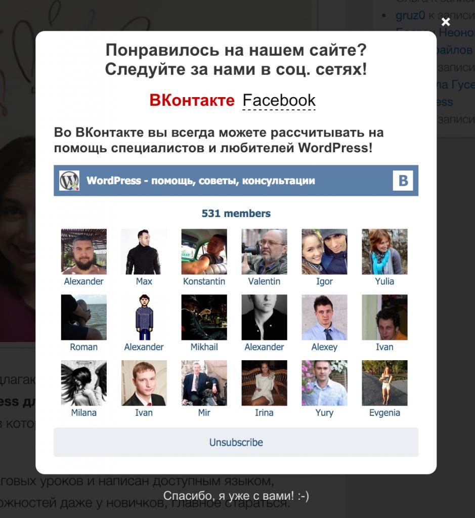 Внешний вид виджета ВКонтакте