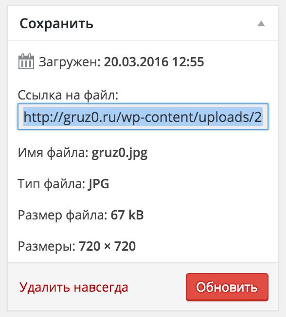 Копируем ссылку на файл